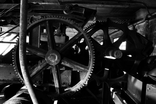 Big Gears; Letchworth Village