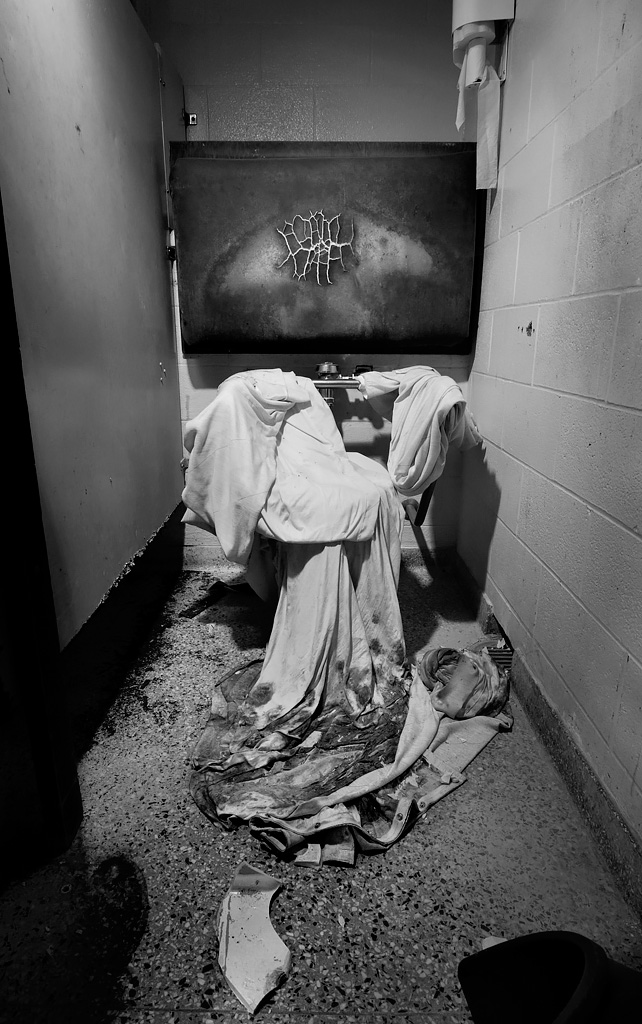 a shrouded porcelin god photo of the abandoned the ladd